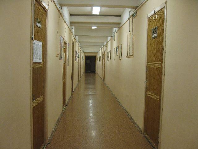 Гимназия № 363 Фрунзенского района фото 4