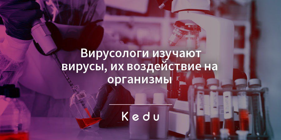 профессия вирусолог