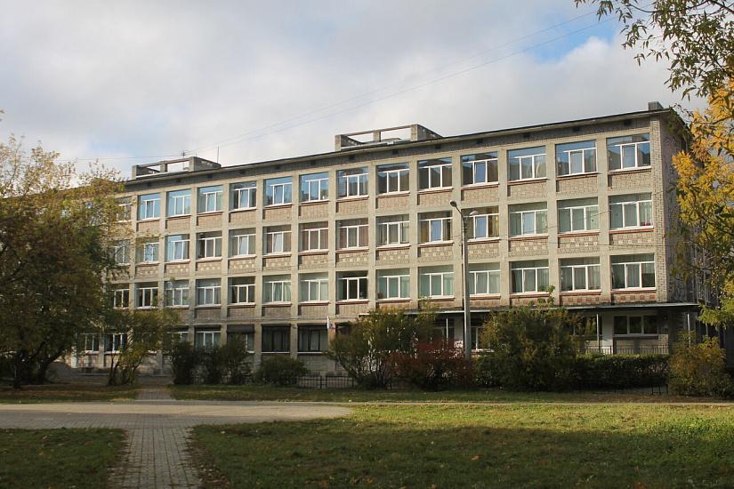 Гимназия № 116 Приморского района фото
