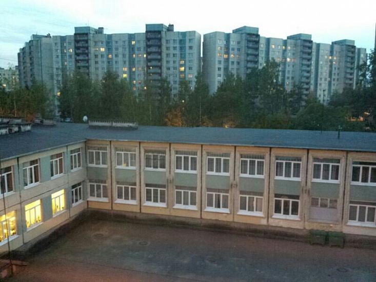 Гимназия № 196 Красногвардейского района фото
